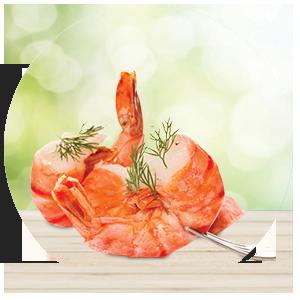matig met vlees en vis