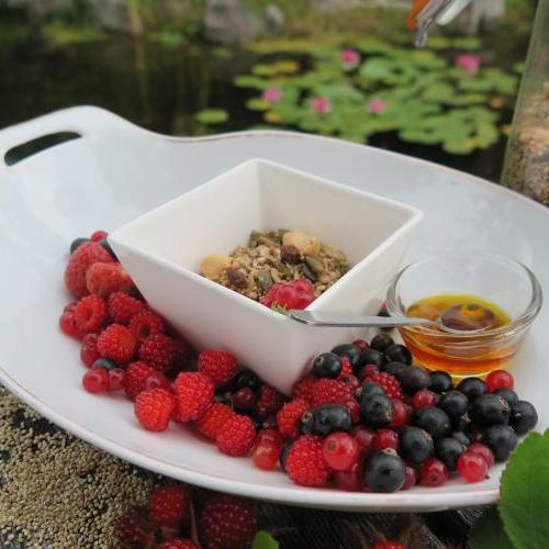 crunchy granola met zomerfruit